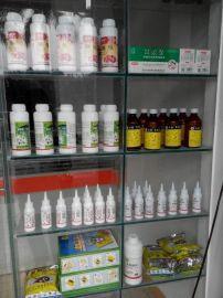 广州灭鼠杀虫公司防白蚁除四害公司灭白蚁多少钱