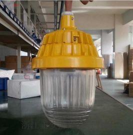 防水防爆灯BPC8720防爆平台灯70W
