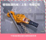 供應雙速環鏈電動葫蘆 鋼絲繩電動葫蘆 微型電動葫蘆