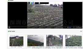 深圳莱安无线网桥助力茶业种殖基地无线视频监控系统
