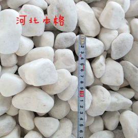本格白石子,新疆白色机制鹅卵石批发