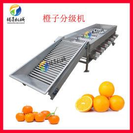 滚筒式水果分选机 橙子柑橘大小分级机