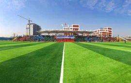 11人制足球草+足球场人造草坪+运动足球场草坪