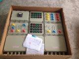 防雨型防爆照明(动力)配电箱