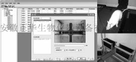 大鼠旷场实验箱 十字迷宫 高架十字迷宫 十字高架迷宫  高架十字迷宫视频分析系统