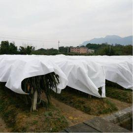 厂家生产老农心愿农用防寒无纺布面料