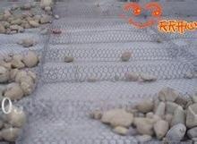 河北专业生产铅丝笼,雷诺护垫,防洪石笼