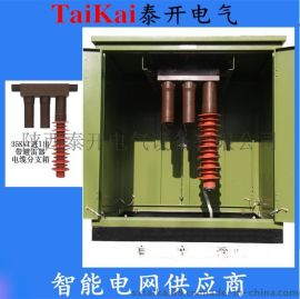 泰开电气供应35KV电缆分支箱一进一出带避雷器DFW-40.5