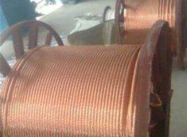 铜包钢绞线接地材料 国电天邦厂家直销