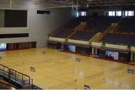 篮球场地面材料 篮球馆专用地板 篮球场木地板 枫木地板 柞木地板