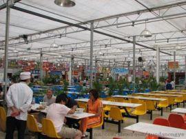 承接西宁海东海北恒温智能温室大棚育苗室节能日光温室大棚