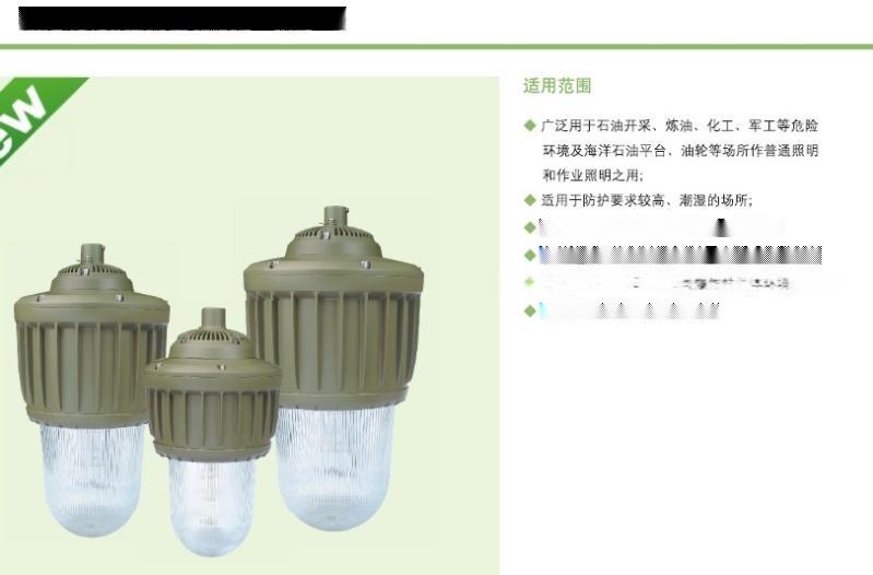 防爆燈HRD82防爆金滷燈