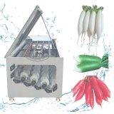 新款白萝卜清洗机,水洗白萝卜机器 自动洗萝卜机子