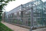 中國全智慧玻璃連棟溫室生產廠家地址