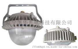 辽宁凯华 防震平台灯