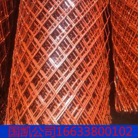 涮漆钢板网 养殖网 安平实体厂家国凯