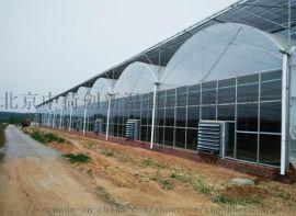温室遮阳采用的方法大棚智能遮阳材料一站式