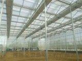 山东玻璃温室的优势分析