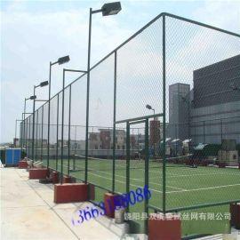 供应运动场围网  操场金属网墙  带6米灯柱护栏网
