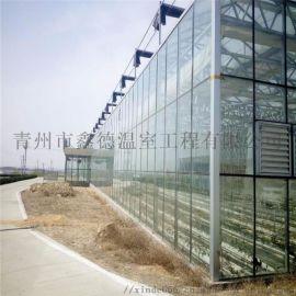 PC阳光板温室安装 阳光板温室 阳光板温室大棚 蔬菜大棚