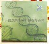 鸡主要组织相容性复合体(MHC/B)ELISA试剂盒