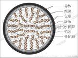 台州电缆型号ZR-DJYJPV22计算机电缆