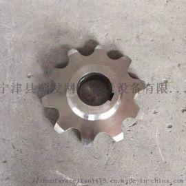 定做不锈钢传动链轮工业机械输送双排链轮