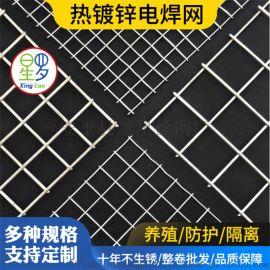 不锈钢电焊网筛网养殖网防护网抹墙网