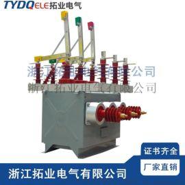 ZW10-12高压双电源互投装置