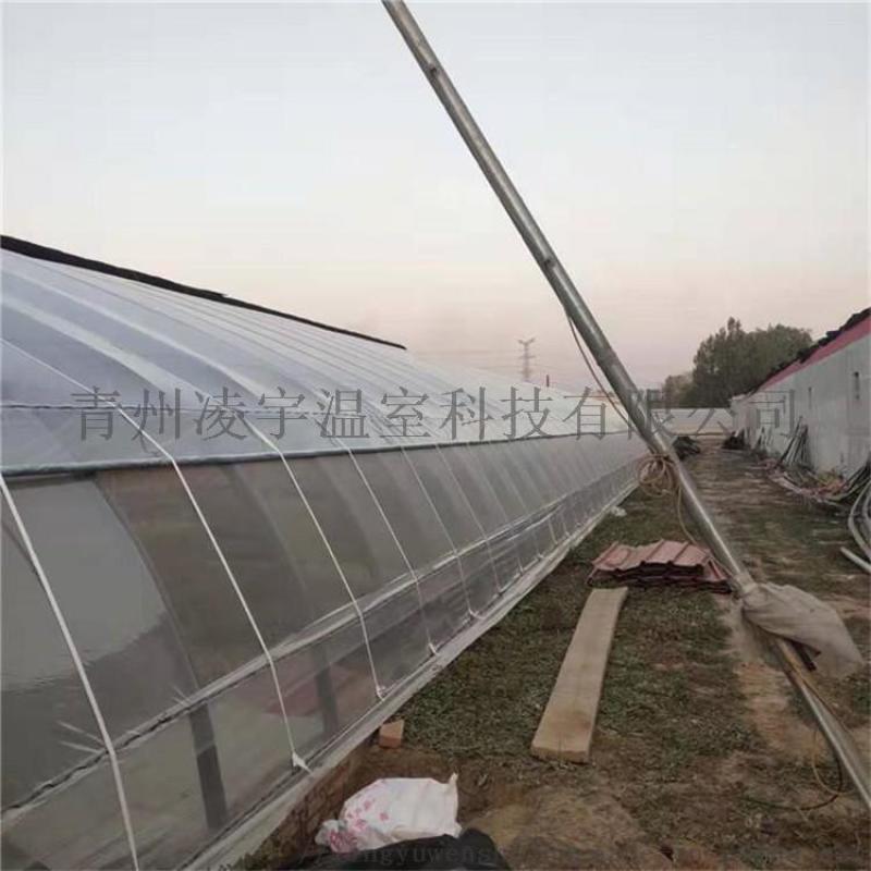 凌宇溫室承接日光溫室工程溫室骨架造價