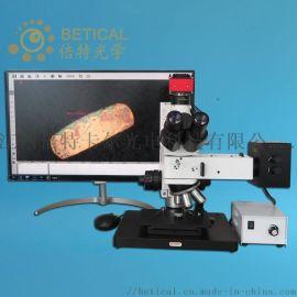 CR100-950HK金属粉末检测粒度测量