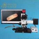 CR100-950HK金屬粉末檢測粒度測量