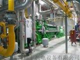 高压负载箱租赁、高压燃气机组测试、燃气机组带载测试