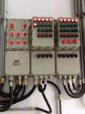 厂家直销防爆配电箱非标定制价格美丽