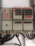 廠家直銷防爆配電箱非標定製價格美麗