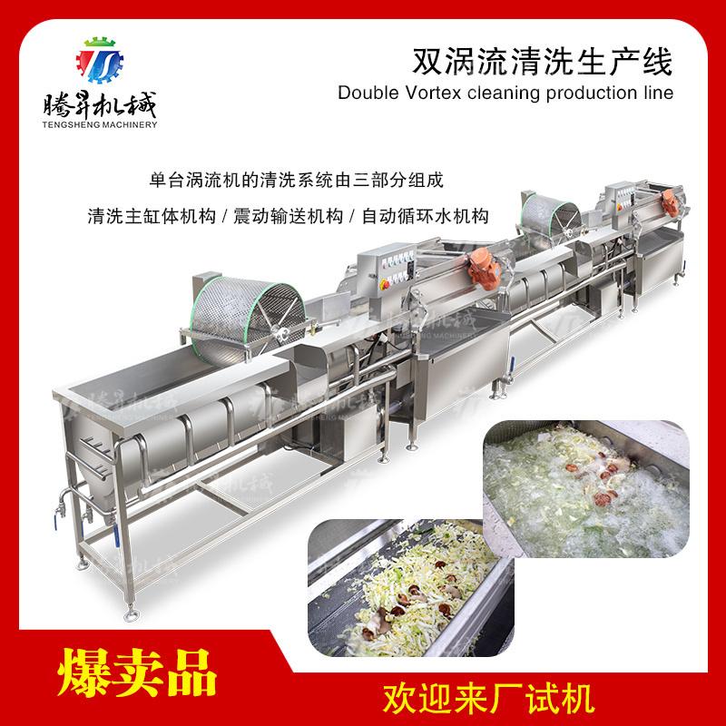 大型蔬菜水果双涡流清洗生产线洗菜机
