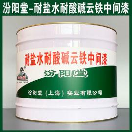 耐盐水耐酸碱云铁中间漆、生产销售、涂膜坚韧