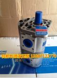 CBWKA-F306-AFφL齒輪油泵