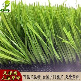 足球场专用人造假草坪学校跑道绿色人工运动地毯草