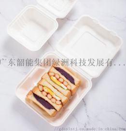 韶能绿洲蛋糕盘子汉堡盒