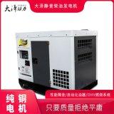 大澤動力20KW柴油發電機商標