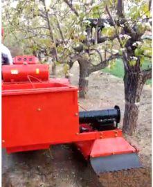 多功能风送果树打药机 小型果树打药机