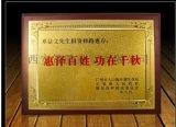 策騰木託獎牌定做,頒獎獎牌定做 西安會議獎牌定製