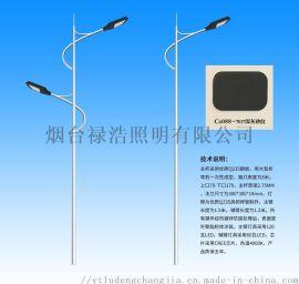 厂家新农村LED太阳能灯户外超亮防水太阳能道路灯