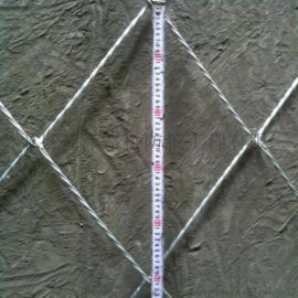 景区防护绿化边坡防护网主动PVC钢丝绳网环形网
