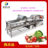 涡流洗菜机 商用果蔬清洗机 带震动沥水出料