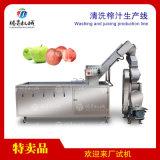 大型全自动水果蔬菜清洗榨汁生产线饮料加工设备定制