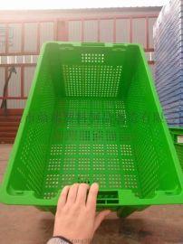 生鲜豆芽筐塑料周转筐