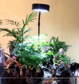 多肉植物生长灯桌面微景观照明LED灯带底板