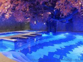 深圳私家恒温游泳池设备工程